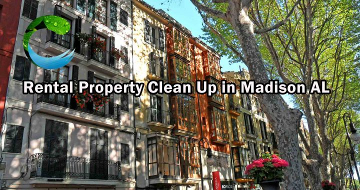 Rental Property Clean Up in Madison Al